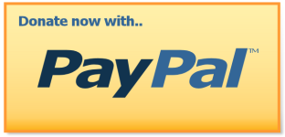 paypal donation button